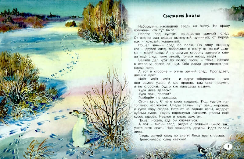 """Книга """"Кузя двухвостый"""" Виталий Бианки разворот 2"""