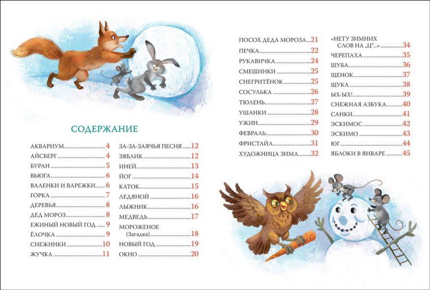 libro-in-russo per bambini sul Natale-azbuka-deda-moroza-rosman-pagina-3