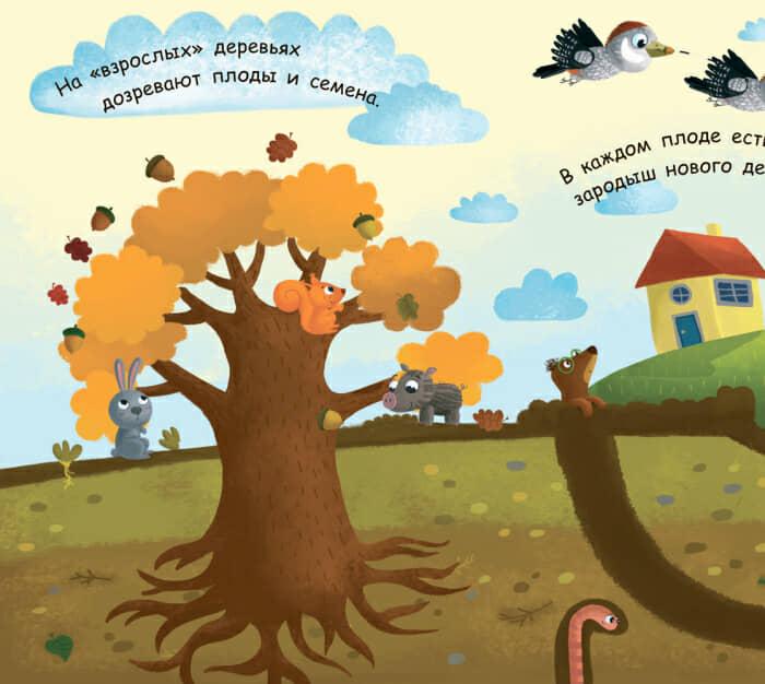 Книга Как вырастает дерево Ранок разворот 1