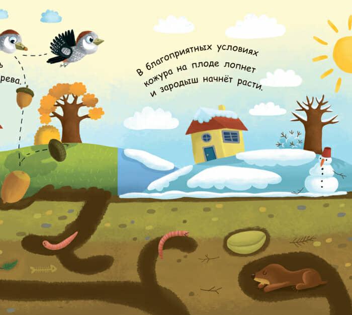 Книга Как вырастает дерево Ранок разворот 2