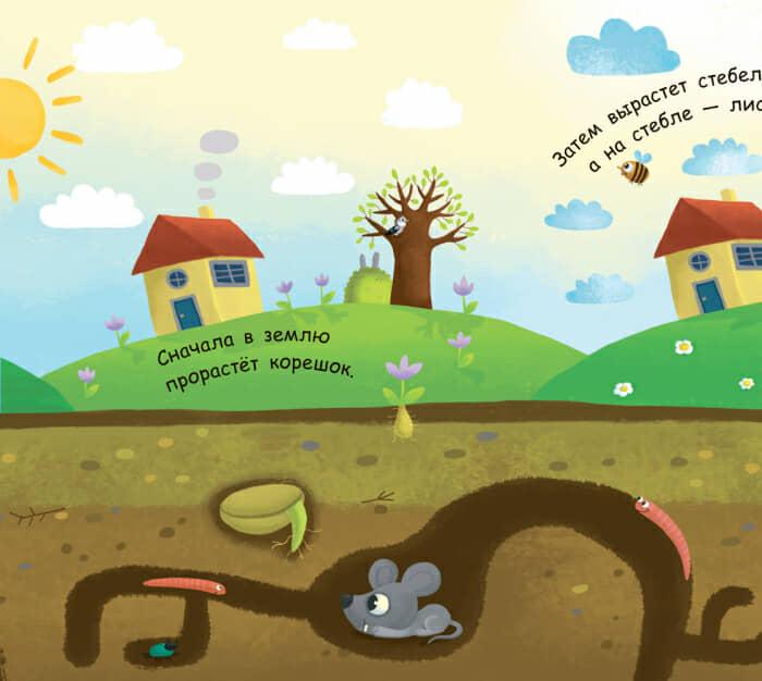 Книга Как вырастает дерево Ранок разворот 3