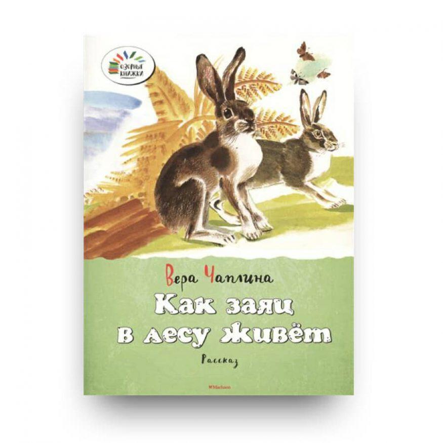 libro in russo per bambini