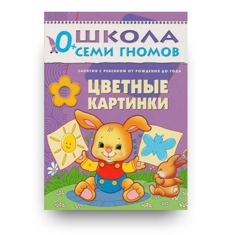 libro-in-russo-tsvetnyye-kartinki-pervyy-god-obucheniya-cover