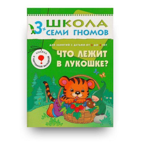 libro-in-russo-chto-lezhit-v-lukoshke-chetvertyy-god-obucheniya-cover