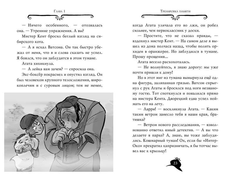 Книга Стива Стивенсона Агата Мистери. Похищение в Ватикане иллюстрации 2