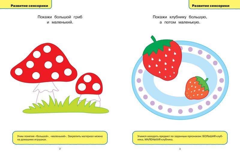 Книга Ольги Земцовой Развивающие тесты для детей 1-2 лет Серия Умные книжки. иллюстрации 1