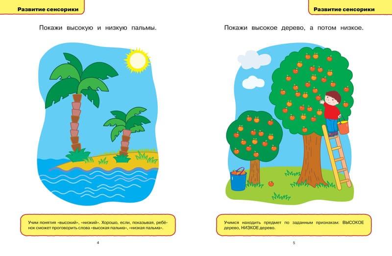 Книга Ольги Земцовой Развивающие тесты для детей 1-2 лет Серия Умные книжки. иллюстрации 2