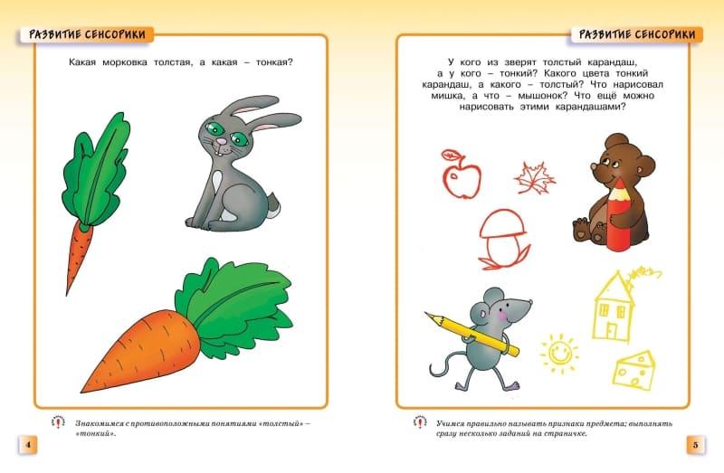 Книга Ольги Земцовой Развивающие тесты для детей 2-3 лет. Серия Умные книжки иллюстрации 3