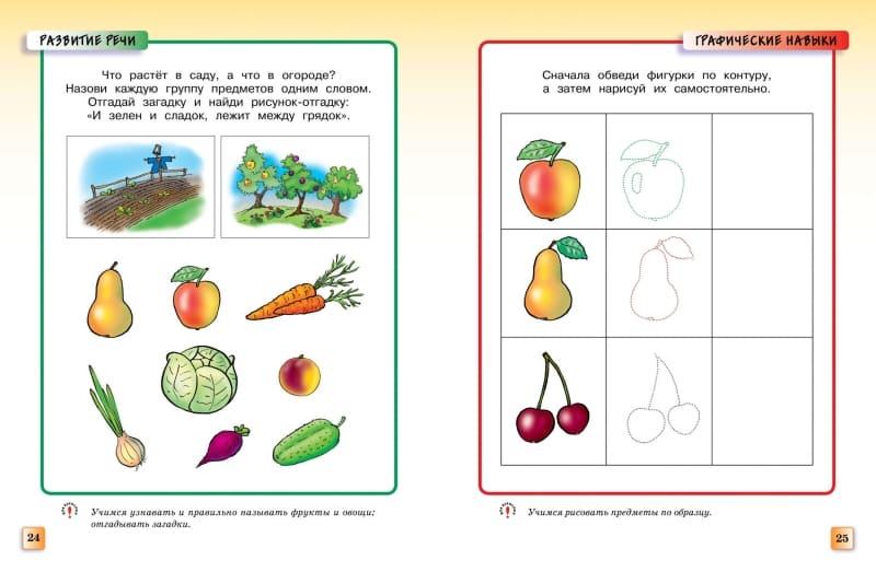Книга Ольги Земцовой Грамотейка. Интеллектуальное развитие детей 4-5 лет иллюстрации 1