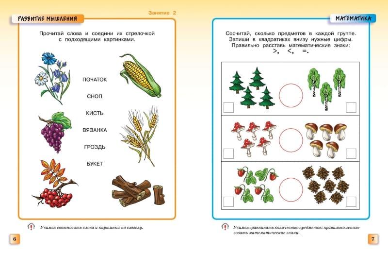 Книга Ольги Земцовой Грамотейка. Интеллектуальное развитие детей 5-6 лет иллюстрации 2