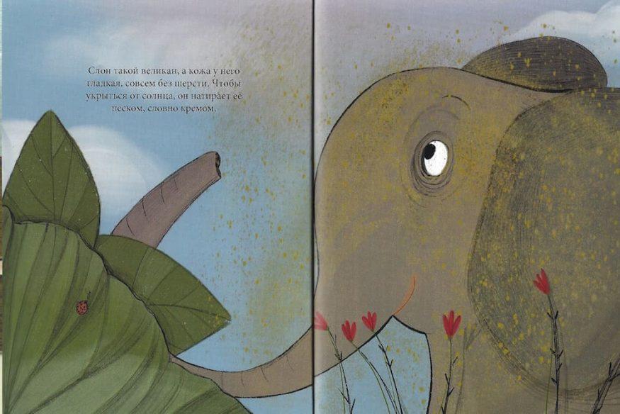 Книга Секрет тени иллюстрации 3