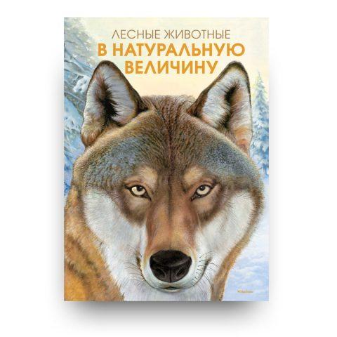 Libro di Holger Haag in lingua russa